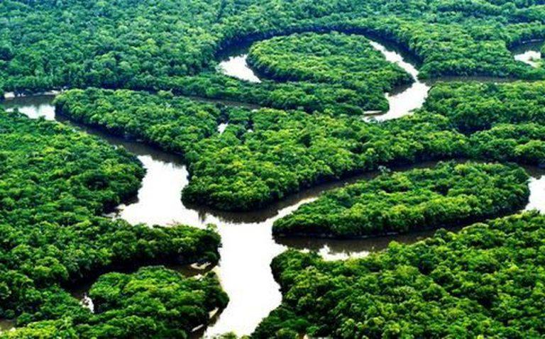 Mincomercio y Amazonas definen estrategia conjunta para reactivación regional