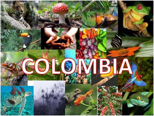 El premio 'Colombia riqueza natural' recibe más de 1.100 postulaciones